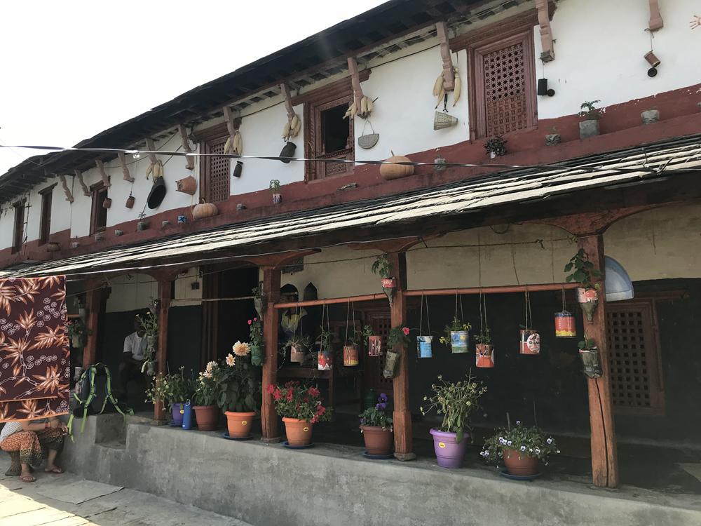 http://www.nepalvillagehike.com/wp-content/uploads/2018/08/root3_002.jpg