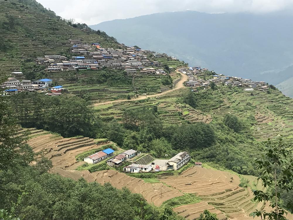 http://www.nepalvillagehike.com/wp-content/uploads/2018/08/root5_004.jpg